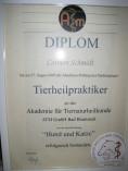 Diplom zur internen Prüfung der Akademie für Tiernaturheilkunde (ATM)